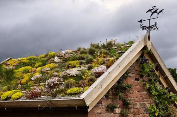 Зеленые двускатные крыши