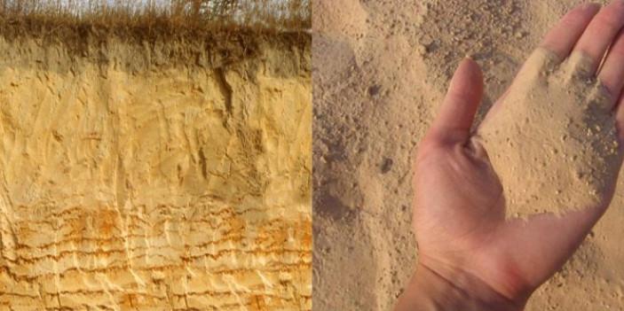 Особенности почвы с преобладанием песка