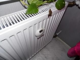 Что получает пользователь от установки прибора учета тепла?